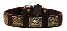 Drum Roll Leather Collar
