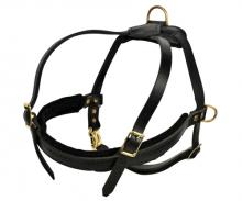 Dean and Tyler The Cowboy Leather Dog Harness